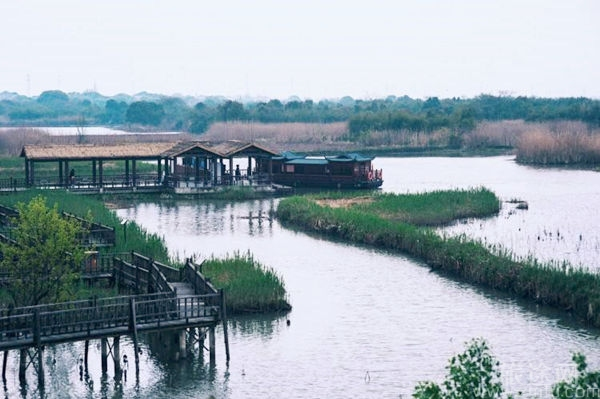 浙江德清下渚湖国家湿地公园