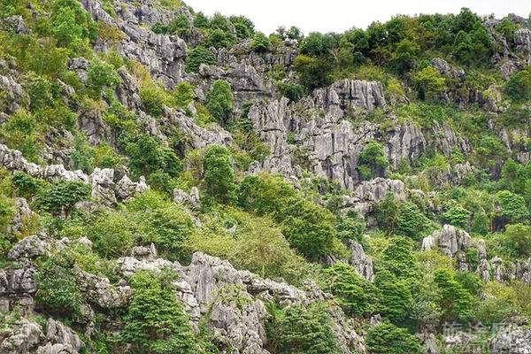 三衢石林景区